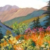 Dawn Thrasher - Wild Flower Plateau