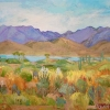 Dawn Thrasher - Bartlett Lake Arizona